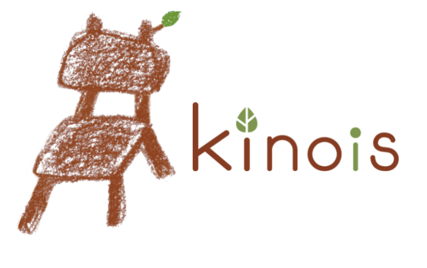 We will make the new style of the Web - kinois